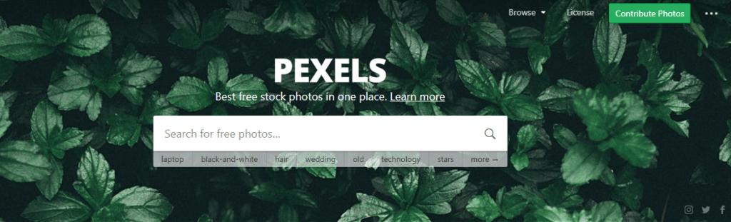pexel bancos de imágenes gratuitos