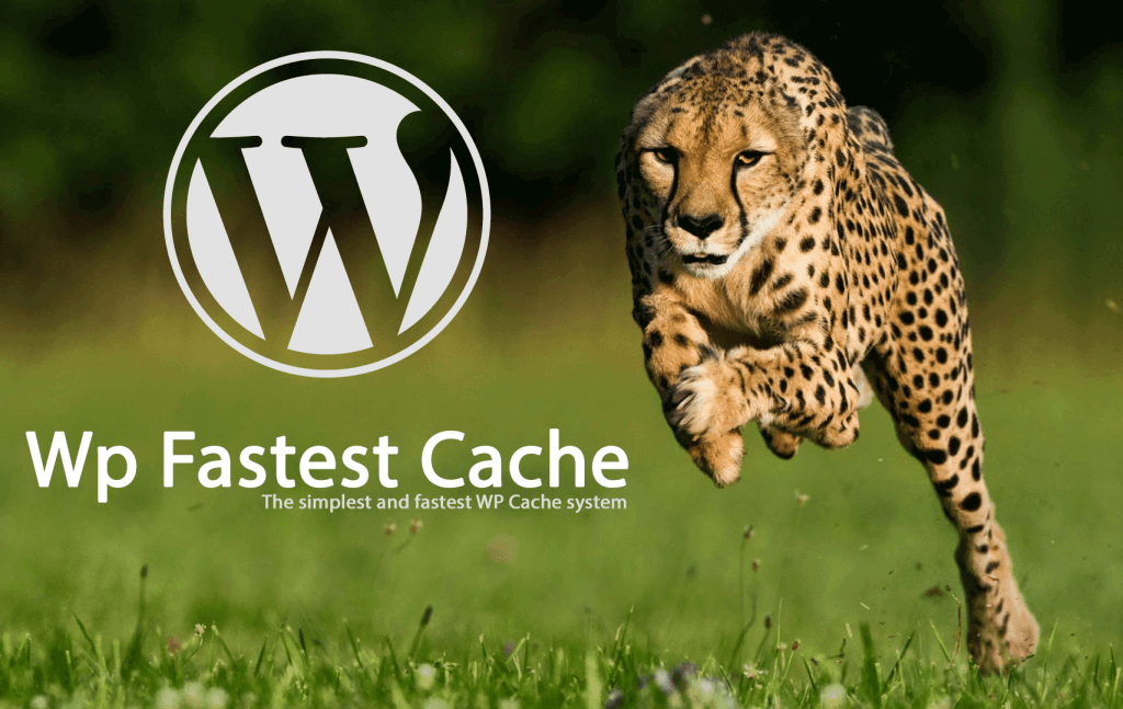 Los mejores plugins de wordpress para optimizar la caché wp fastes cache