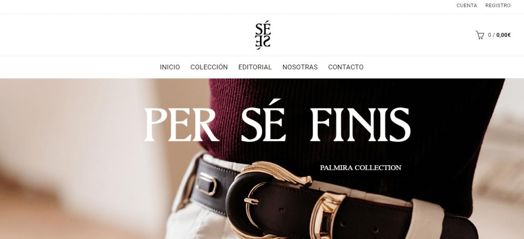 diseño web persefinis png